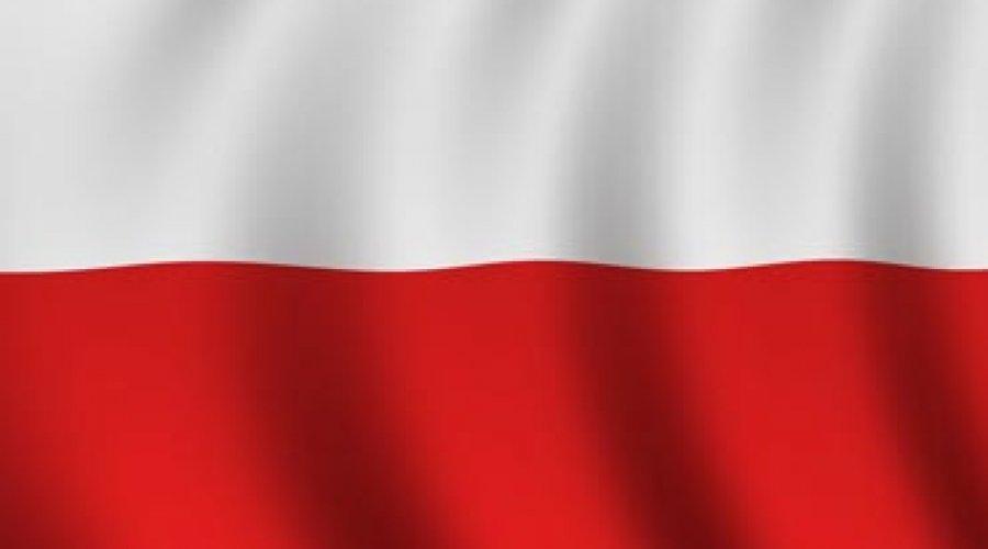 ставки спорт польские на