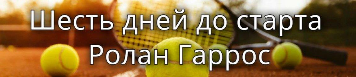 Торжество чешского тенниса