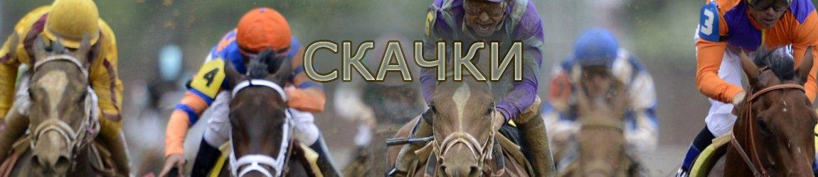 Скачки и ставки на лошадей