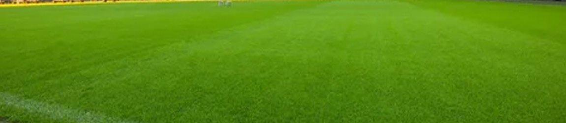 Скромная суперзвезда «Ливерпуля» Диегу Жота