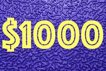 План плюс $1000 к доходу в месяц на спортивных ставках