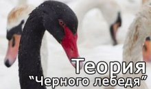 Теория «Черный лебедь» в ставках на спорт