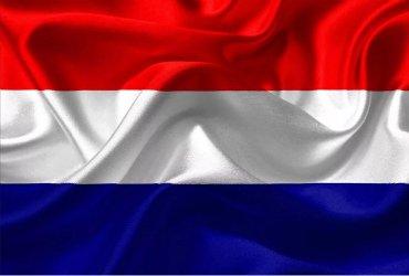 Сборная Нидерландов на чемпионатах Европы