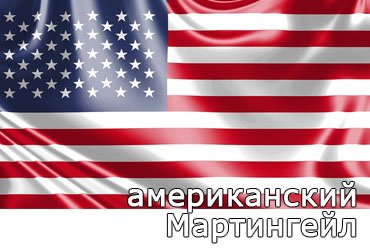 Американский Мартингейл